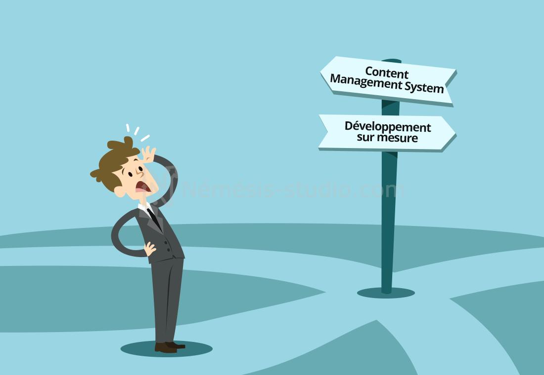 developpement-sur-mesure-vs-cms